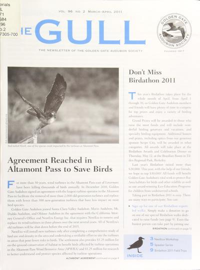 The Gull.