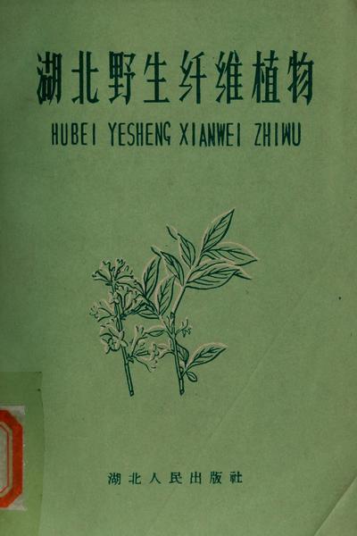 Hu bgei ye sheng qian wei zhi wu