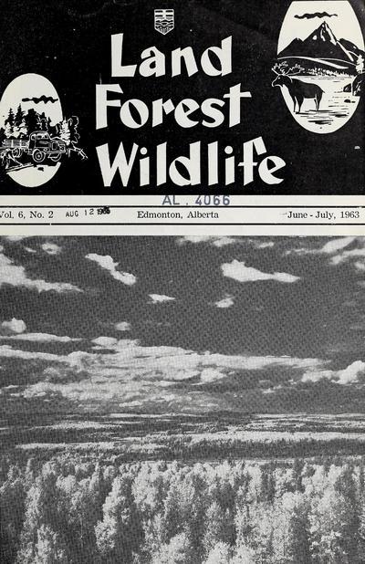 Land forest wildlife.