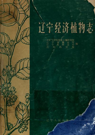 Liao ning jing ji zhi wu zhi