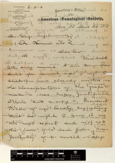 Correspondence : Flagg (Willard) and Engelmann (George), 1875-1877.