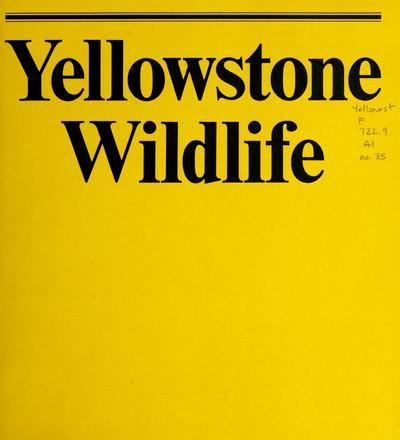 Yellowstone wildlife /