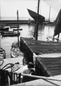 Barcola, barche ormeggiate al porticciolo(immagine commissionata da Delia Benco per il Lloyd Triestino - rivista Sul Mare)