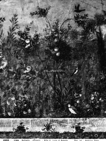 Detail with a fruit tree. Frescos from the Villa of Livia, Ad Gallinas Albas, now preserved in the National Museum of Rome, Baths of Diocletian, Rome
