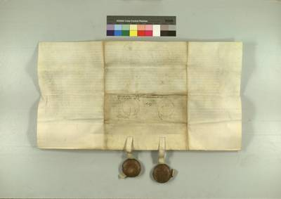 SbgE AUR 1539 VIII 02