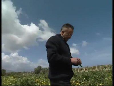 Biobauern auf Sizilien