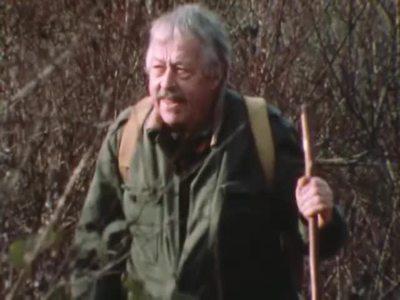 ROBERT HAINARD: THE WILD BOAR