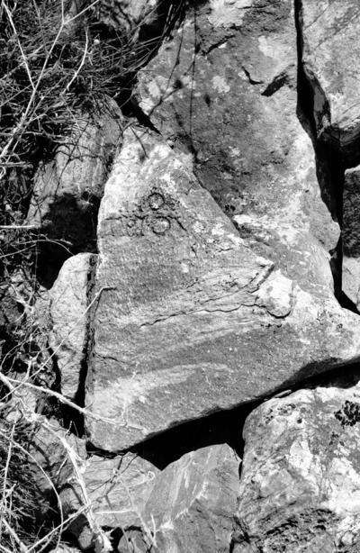 Funerary inscription for descendant of Demetrios