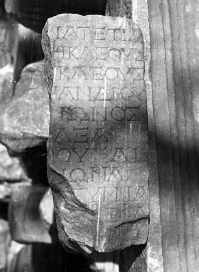 Posthumous honours for Zenon son of Zenon