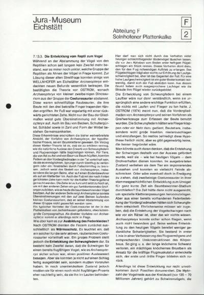 F2_Solnhofener Plattenkalke