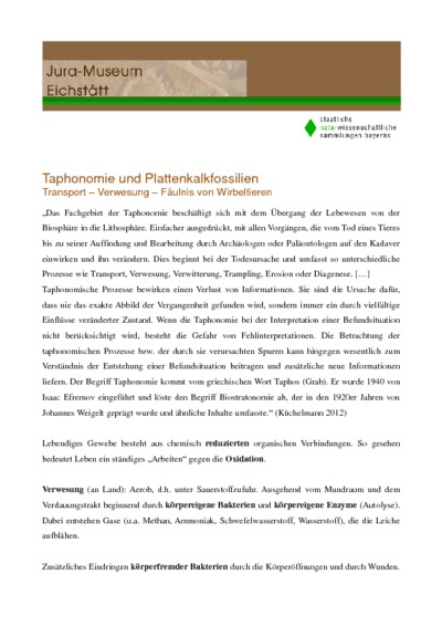 Taphonomie und Plattenkalkfossilien