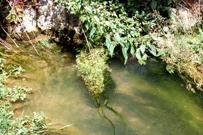 Bild 56 zu: Trinkwasser in Gefahr - Die Karstlandschaft der Frankenalb