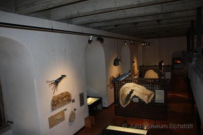 Ein Blick in den großen Saal des Jura-Museums