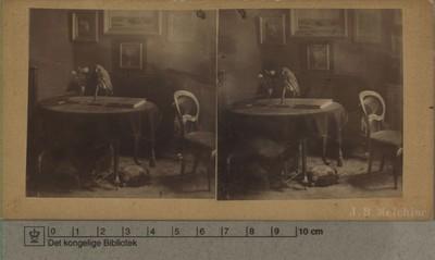 Bredgade nr. 4 med møblement og udstoppet ugle, 1891