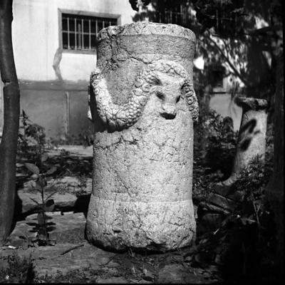 MAMA XI 10 (Apollonia)