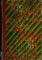 Manual completo del tintorero : obra teórica y práctica, puesta al alcance de los tintoreros, quitamanchas y toda clase de personas