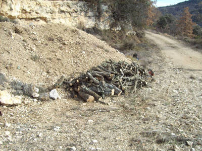 Justo Sorando Gómez, carboner,construint una carbonera  de llenya, pas.2