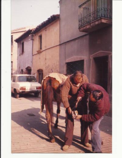 Manel Riera ferrant un cavall davant del seu taller