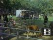 Mobile Zoo