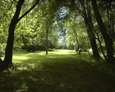 Phillipshagen - Hvilestedet til Lort Phillips