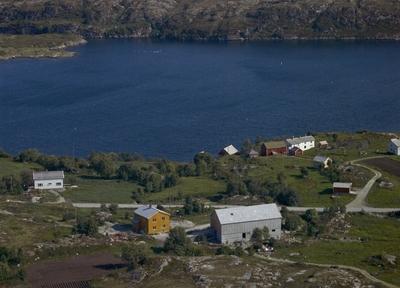 Eiendommene Hammervik, Skaget og Nyheim