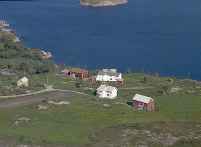Eiendommene Hammervik, Myrvang og Nyheim