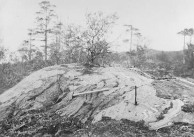 Malmfjell 1903-1904