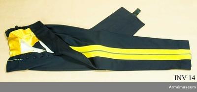 Långbyxor m/1845, Långbyxor m/1845 för general vid Generalitetet : Av mörkblått kläde med dubbla gula klädeslister och  emellan dem en gul passpoil. I gylfen 2 knapprader med 7 resp. 3 svarta knappar av bakelit. Svarta hällor av bomullsresår att knäppas under foten. Gult sidenfoder i linningen. Har tillhört Gustav VI Adolf (1882-1973).