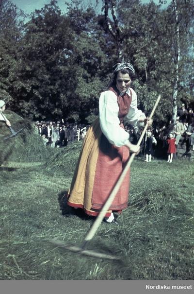 Folkdräktsklädd kvinna räfsar hö.