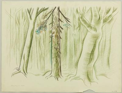 Der Streit um den Sergeanten Grischa [I] - Wald