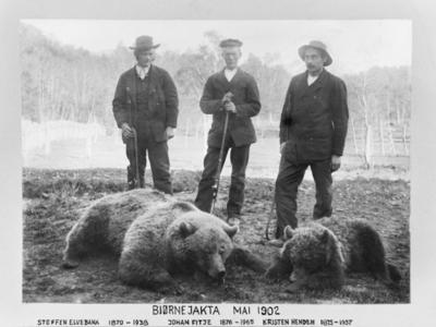 Bjørn i Sogn og Fjordane