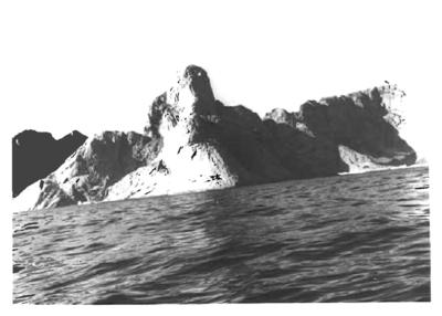 Grønlandsfiske
