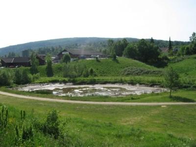 Evjudalen – et slags speilbilde av utviklingen av Bøbygda