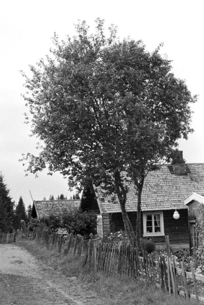 Hjemme hos Prøysen
