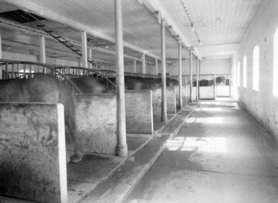 Tomb jordbruksskole