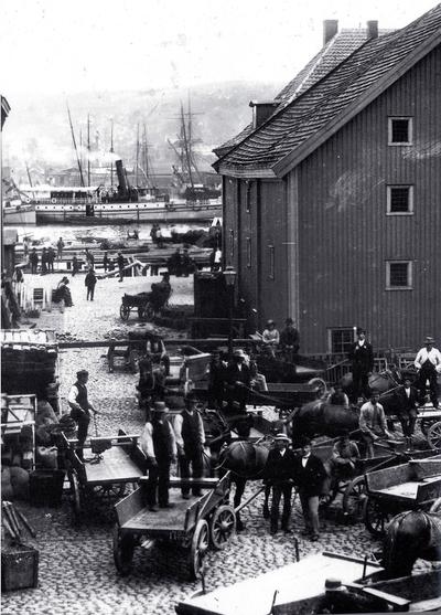 Bjørvikas historie
