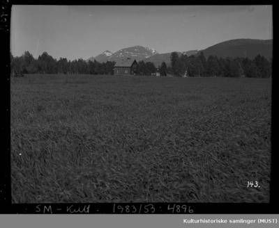 Bureisingsbruket Lund i Bjerkeng