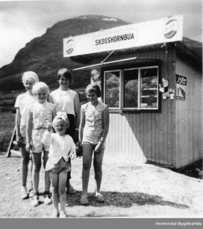 Skogshornbua på Jordheimstølane i Hemsedal