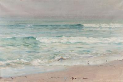 Bølger ved stranden