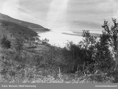 Utsikt fra Langnes ned mot Guldholmen som stikker frem bak nesset