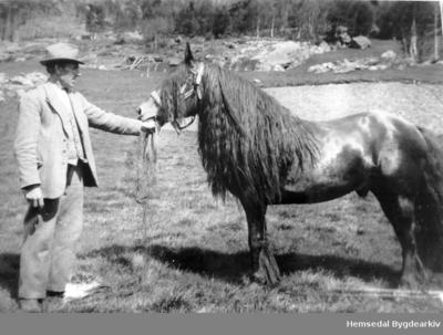 Per Embre (1881-1944) med hingsten Fjellgut