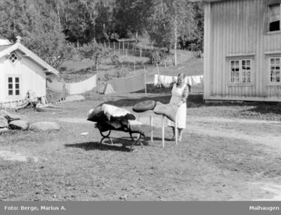 Vårrengjøring på Grimsrud gård ved Ransfjorden