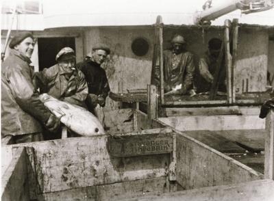 Mannskap på M/K Glannøy med en stor fisk