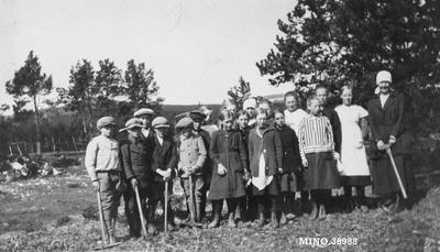 Skolebarn på skogplanting