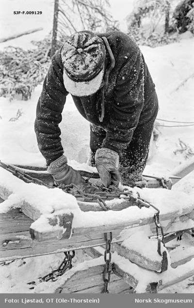 Tømmerkjøring i Nordre Osen i Åmot kommune i Hedmark i februar 1980