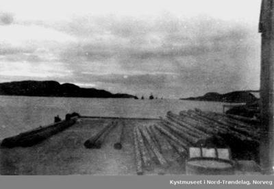 Trolig tyske skip i Nærøysundet