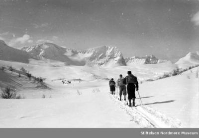 Mennesker på skitur i den norske fjellheimen