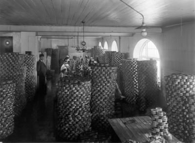 Kvinner pakker fisk for hermetisering i et rom fullt av runde stabler av hermetikkbokser