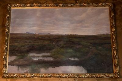 Torvmyr, Jæren 1901