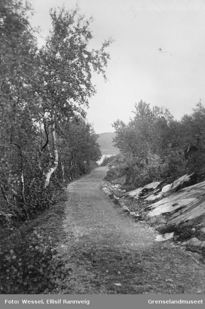 Veien til Soldatbukta
